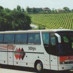Bus low cost per viaggiare in economia!