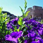 Tra gli Orti e i Giardini dell'Antica Roma