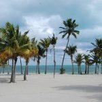 Vivi un caldo Natale a Miami