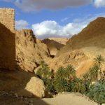 Nessuna idea per le vacanze estive? Ecco Djerba e altre belle città